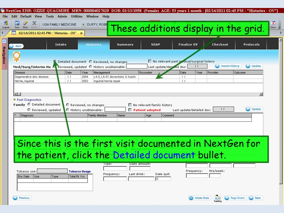 These additions display in the grid. Since this is the first visit documented in NextGen for the patient, click the Detailed document bullet.