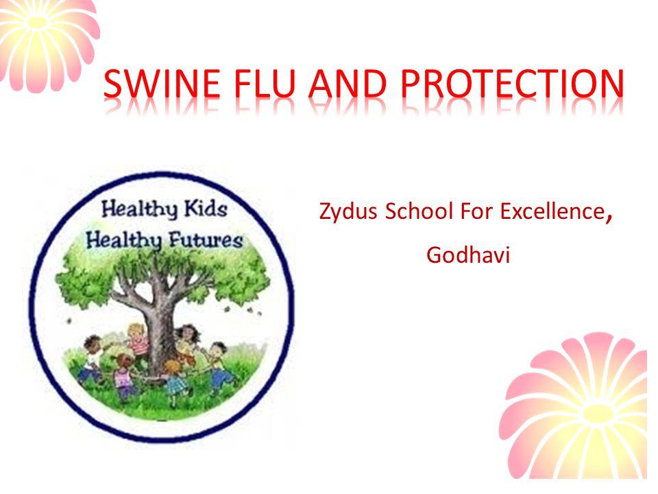 Zydus School For Excellence, Godhavi