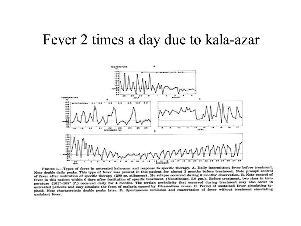 Fever 2 times a day due to kala-azar