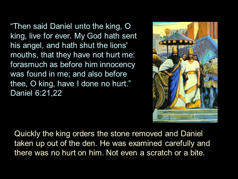 """""""Then said Daniel unto the king, O king, live for ever. My God hath sent his angel, and hath shut the lions' mouths, that they have not hurt me: foras"""