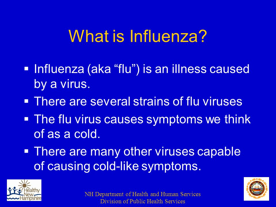 NH Department of Health and Human Services Division of Public Health Services Regular Influenza Season  Each year the virus circulates throughout the world  Each year minor changes in the virus occur; yearly flu vaccine based on these changes  In most healthy persons, the immune system protects them from severe disease, so they suffer only from a mild flu