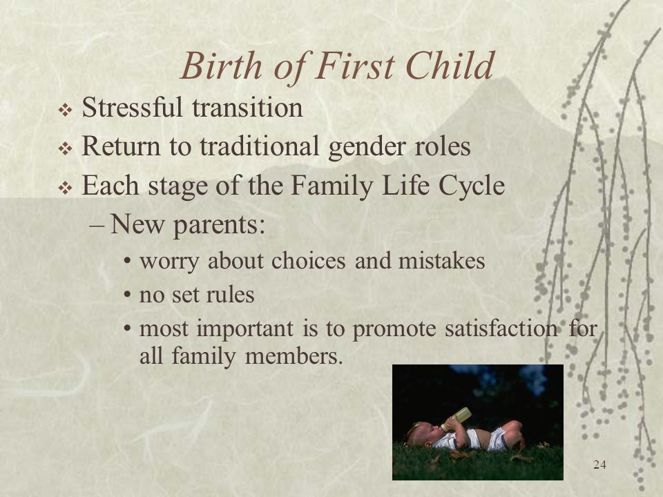 24 Birth of First Child  Stressful transition  Return to traditional gender roles  Each stage of the Family Life Cycle –New parents: worry about ch