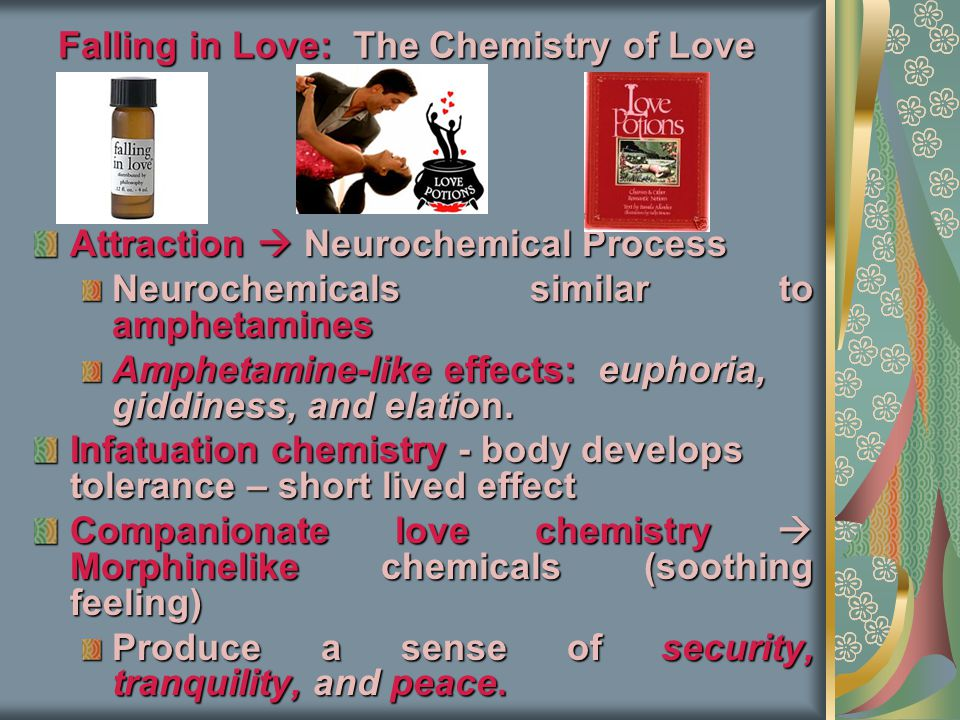 Falling in Love: The Chemistry of Love Attraction  Neurochemical Process Neurochemicals similar to amphetamines Amphetamine-like effects: euphoria, giddiness, and elation.