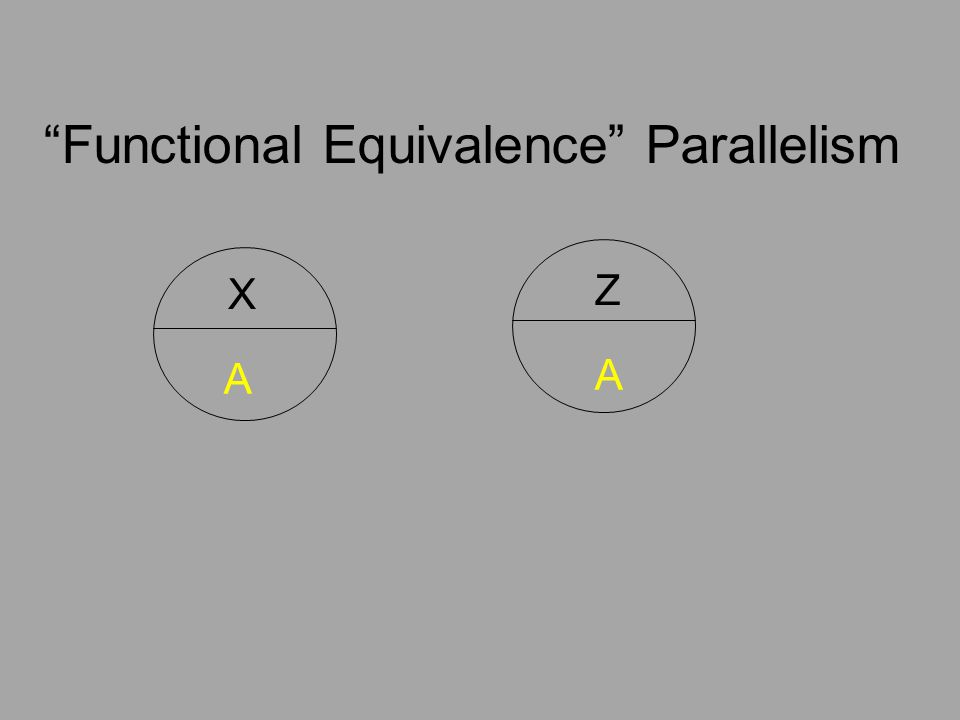 """X Z A A """"Functional Equivalence"""" Parallelism"""