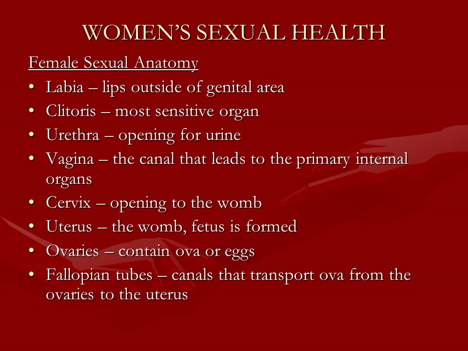 WOMEN'S SEXUAL HEALTH Female Sexual Anatomy Labia – lips outside of genital areaLabia – lips outside of genital area Clitoris – most sensitive organClitoris – most sensitive organ Urethra – opening for urineUrethra – opening for urine Vagina – the canal that leads to the primary internal organsVagina – the canal that leads to the primary internal organs Cervix – opening to the wombCervix – opening to the womb Uterus – the womb, fetus is formedUterus – the womb, fetus is formed Ovaries – contain ova or eggsOvaries – contain ova or eggs Fallopian tubes – canals that transport ova from the ovaries to the uterusFallopian tubes – canals that transport ova from the ovaries to the uterus