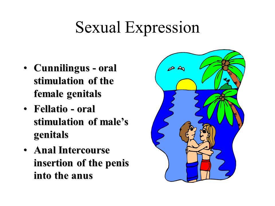 Sexual Expression Cunnilingus - oral stimulation of the female genitalsCunnilingus - oral stimulation of the female genitals Fellatio - oral stimulati