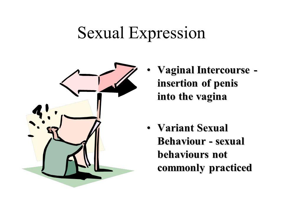 Sexual Expression Vaginal Intercourse - insertion of penis into the vaginaVaginal Intercourse - insertion of penis into the vagina Variant Sexual Beha