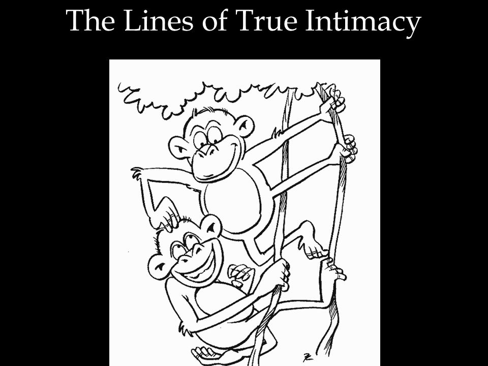 The Lines of True Intimacy