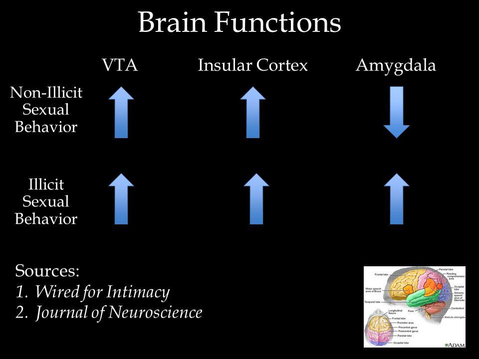 Brain Functions VTAInsular CortexAmygdala Illicit Sexual Behavior Non-Illicit Sexual Behavior Sources: 1.