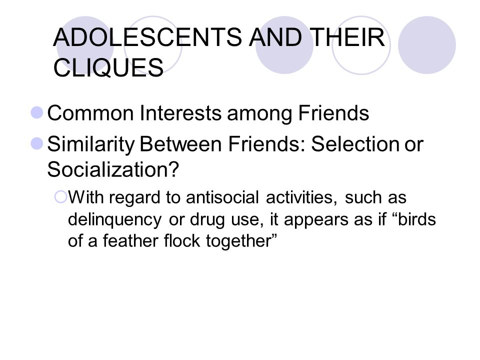 ADOLESCENTS AND THEIR CLIQUES Similarity among Clique Members  Adolescents' cliques typically are composed of people of the same age, same race, same