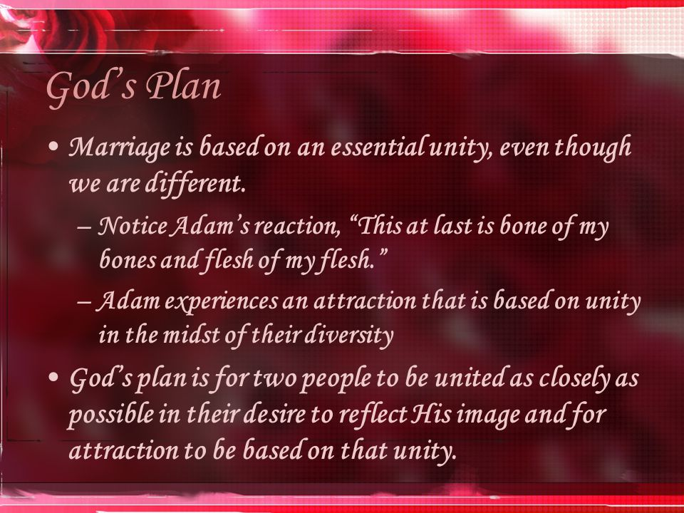 God's Plan Marriage is based on an essential unity, even though we are different.
