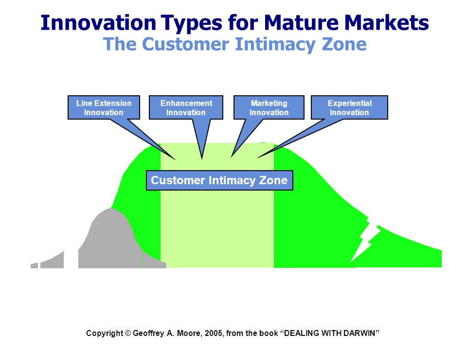 """Copyright © Geoffrey A. Moore, 2005, from the book """"DEALING WITH DARWIN"""" Experiential Innovation Marketing Innovation Innovation Types for Mature Mark"""