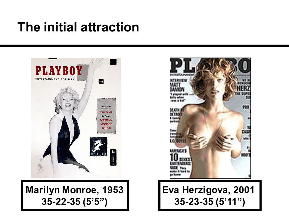 "The initial attraction Marilyn Monroe, 1953 35-22-35 (5'5"") Eva Herzigova, 2001 35-23-35 (5'11"")"