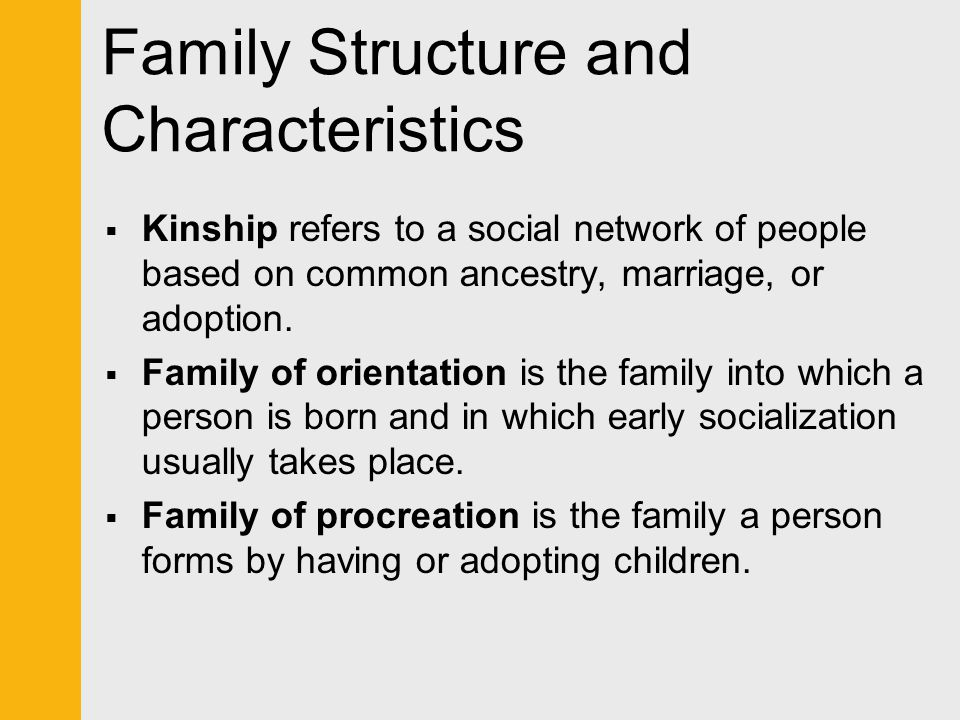 Symbolic Interactionist Perspective How family problems are perceived and defined depends on:  Patterns of communication.