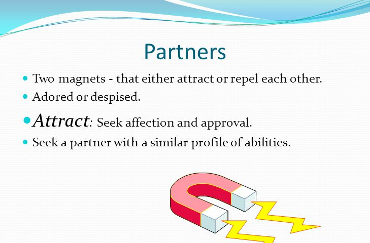 Partners Two magnets - that either attract or repel each other.