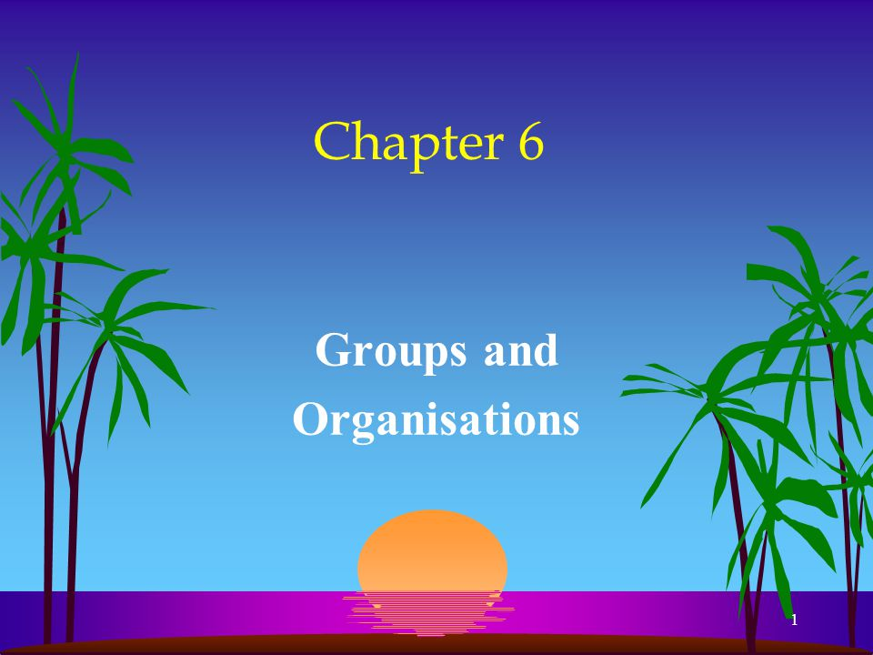 1 Chapter 6 Groups and Organisations