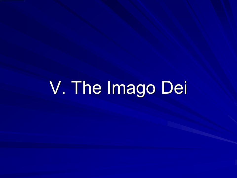V. The Imago Dei