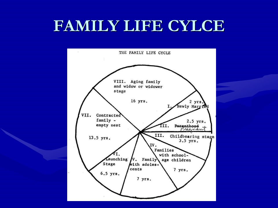 FAMILY LIFE CYLCE