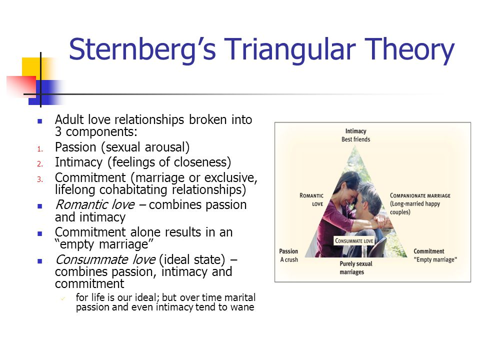 Sternberg's Triangular Theory Adult love relationships broken into 3 components: 1.