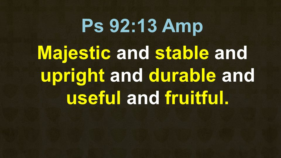 Ps 92:13 Amp Majestic and stable and upright and durable and useful and fruitful.
