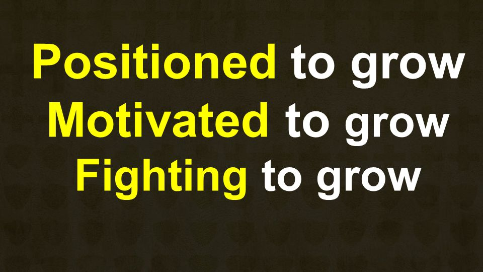 Positioned to grow Motivated to grow Fighting to grow
