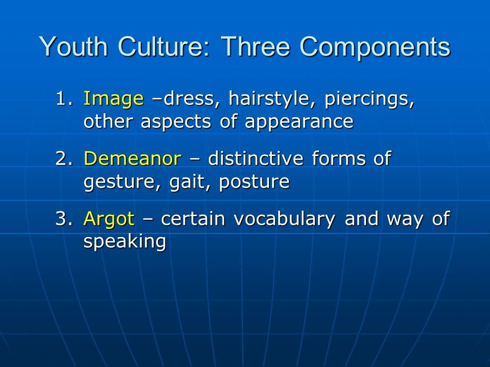 Youth Culture: Three Components 1.Image –dress, hairstyle, piercings, other aspects of appearance 2.Demeanor – distinctive forms of gesture, gait, pos