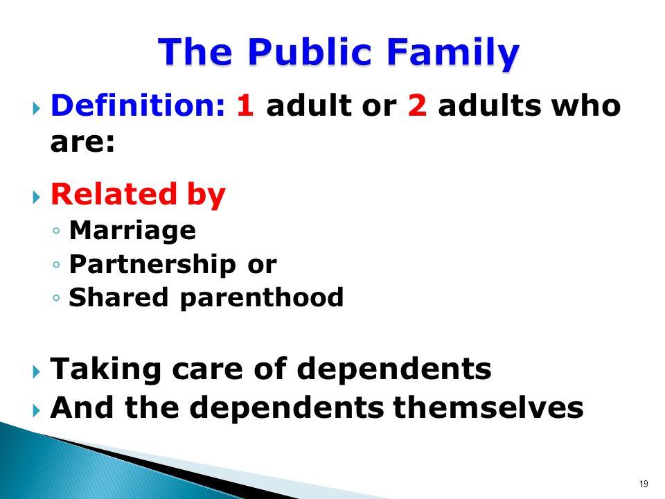 19  Definition: 1 adult or 2 adults who are:  Related by ◦Marriage ◦Partnership or ◦Shared parenthood  Taking care of dependents  And the dependents themselves The Public Family