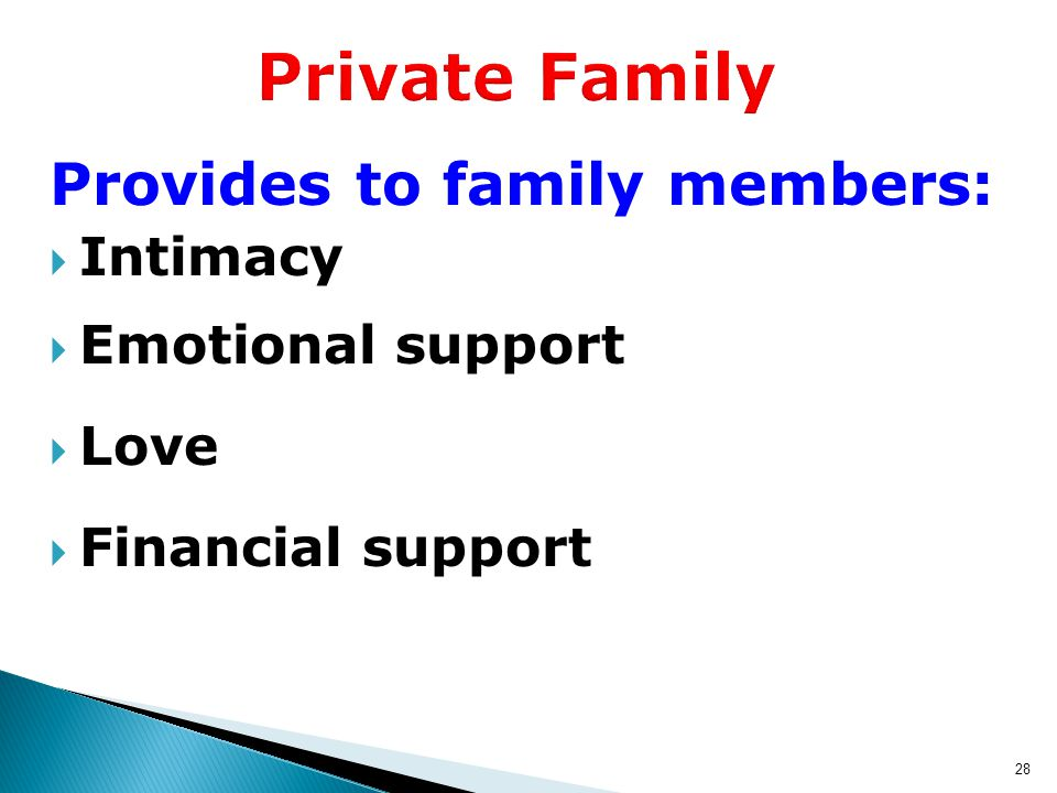 28 Private Family Provides to family members:  Intimacy  Emotional support  Love  Financial support