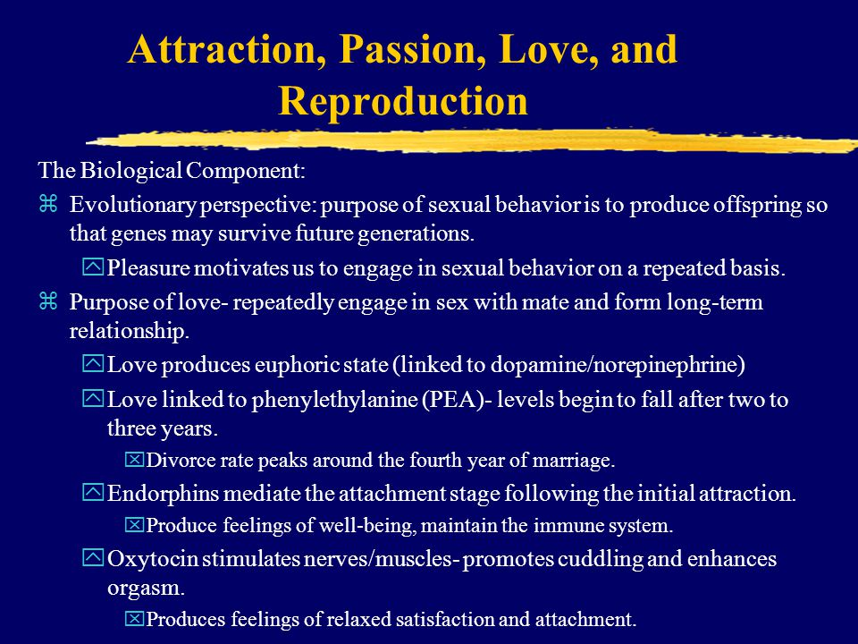 Attraction, Passion, Love, and Reproduction The Biological Component: zEvolutionary perspective: purpose of sexual behavior is to produce offspring so that genes may survive future generations.