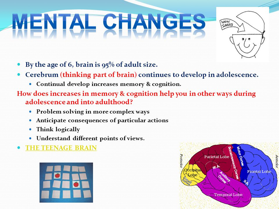 By the age of 6, brain is 95% of adult size.