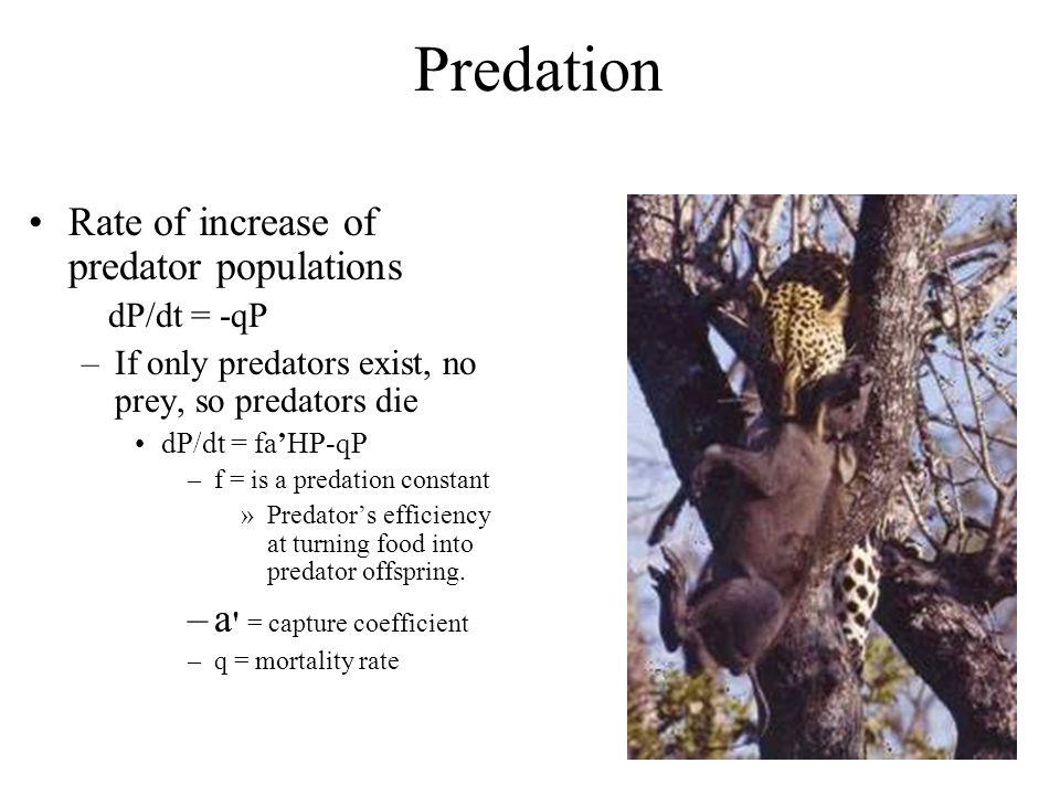 Predation Rate of increase of predator populations dP/dt = -qP –If only predators exist, no prey, so predators die dP/dt = fa'HP-qP –f = is a predatio