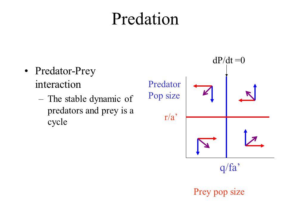 Predation Predator-Prey interaction –The stable dynamic of predators and prey is a cycle Prey pop size Predator Pop size q/fa' dP/dt =0 r/a'