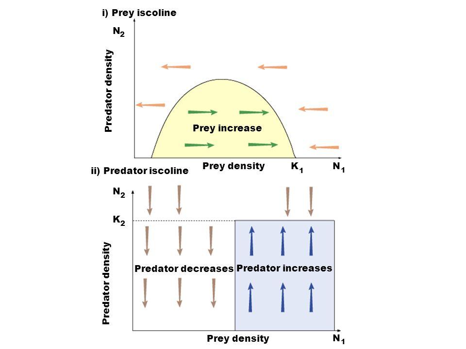 Prey increase i) Prey iscoline K N N N N K 1 1 1 2 2 2 ii) Predator iscoline Prey density Predator increases Predator decreases Predator density Prey