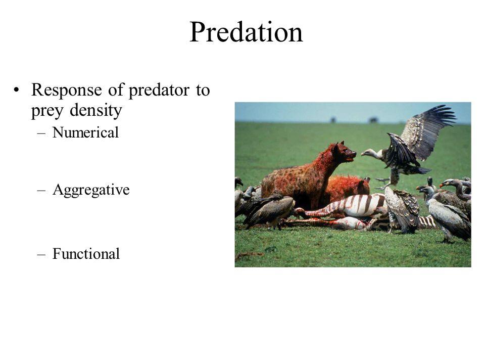 Predation Response of predator to prey density –Numerical –Aggregative –Functional