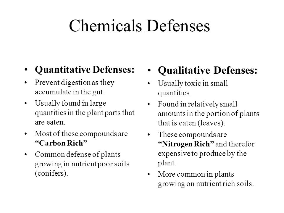 Chemicals Defenses Quantitative Defenses: Prevent digestion as they accumulate in the gut. Usually found in large quantities in the plant parts that a