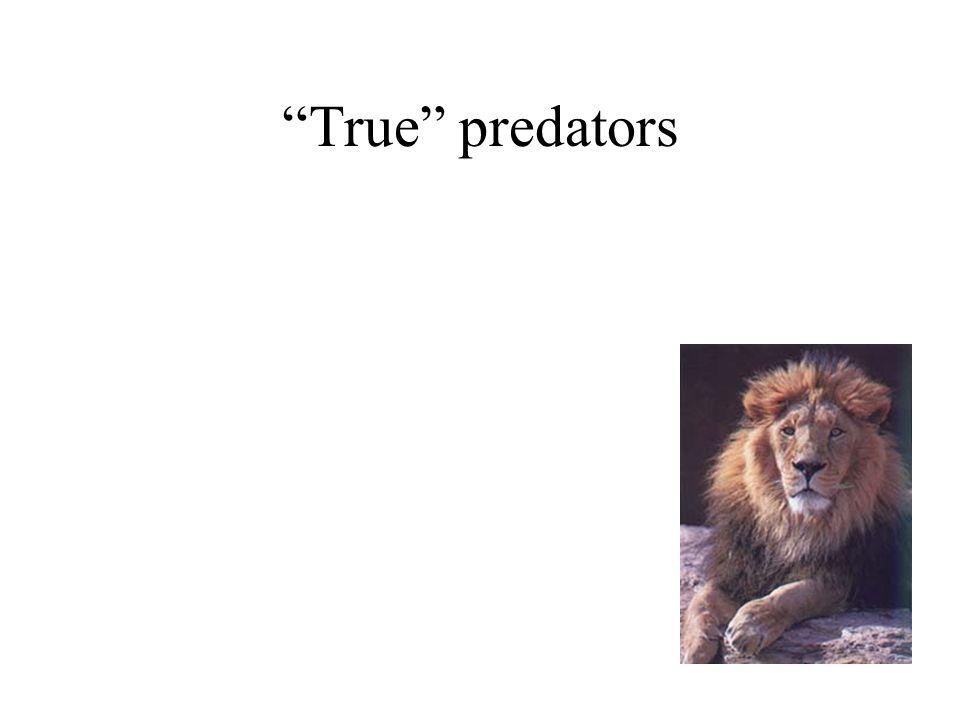 """True"" predators"