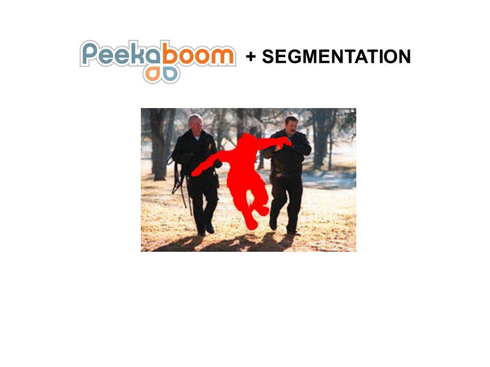 + SEGMENTATION
