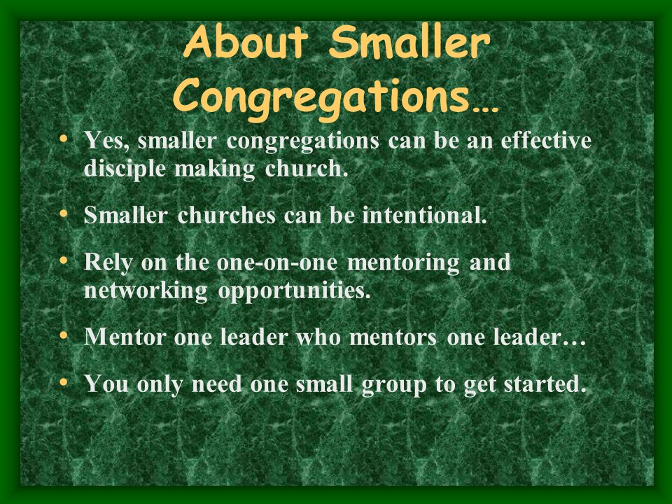 A small group leader should be...