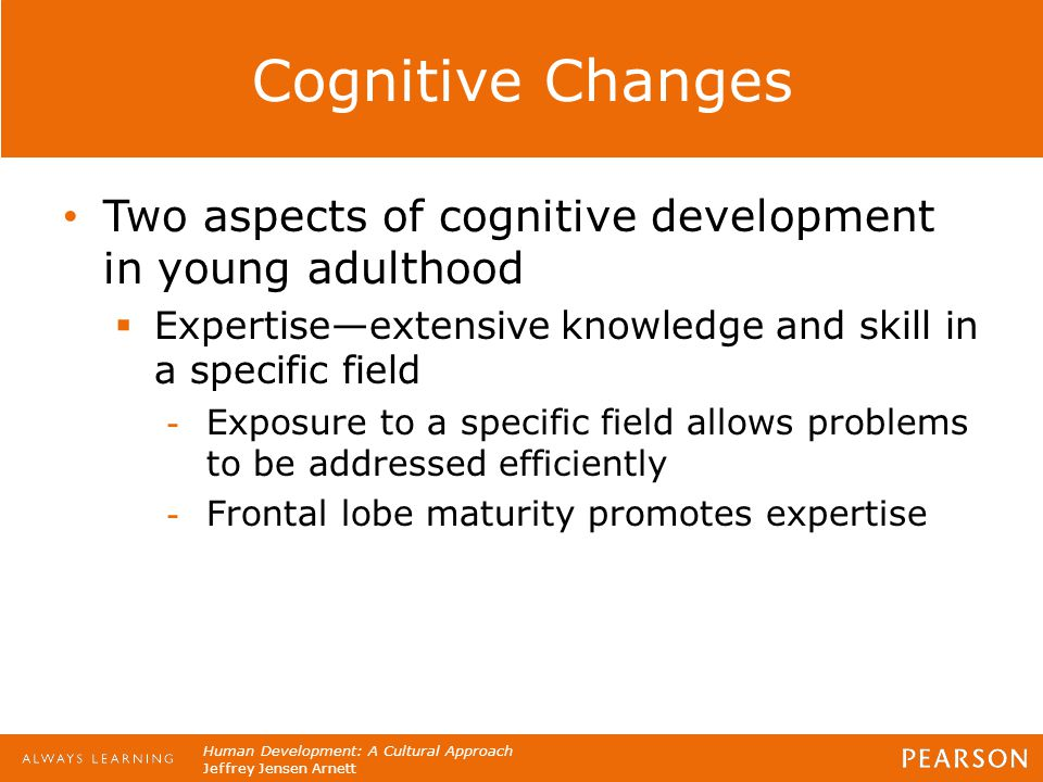 Human Development: A Cultural Approach Jeffrey Jensen Arnett Cognitive Changes Two aspects of cognitive development in young adulthood  Expertise—ext