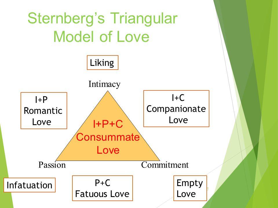 15 I+P+C Consummate Love PassionCommitment Intimacy Empty Love Liking Infatuation I+C Companionate Love I+P Romantic Love P+C Fatuous Love Sternberg's