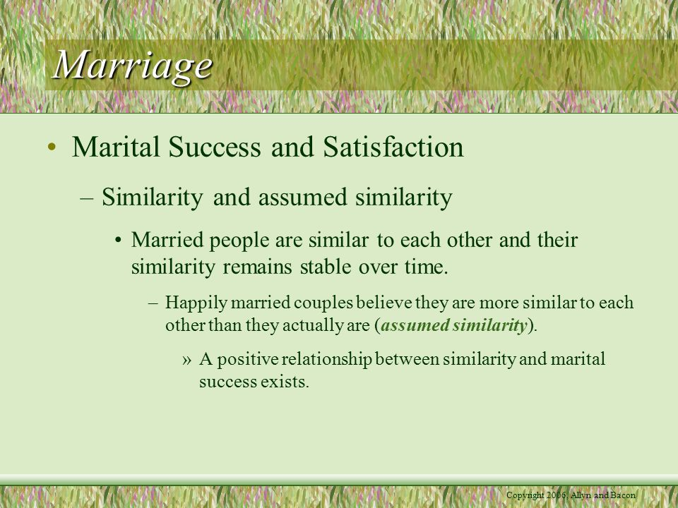 Copyright 2006, Allyn and Bacon Marriage –Dispositional factors Some people are better than others are at maintaining a positive relationship with their spouses.