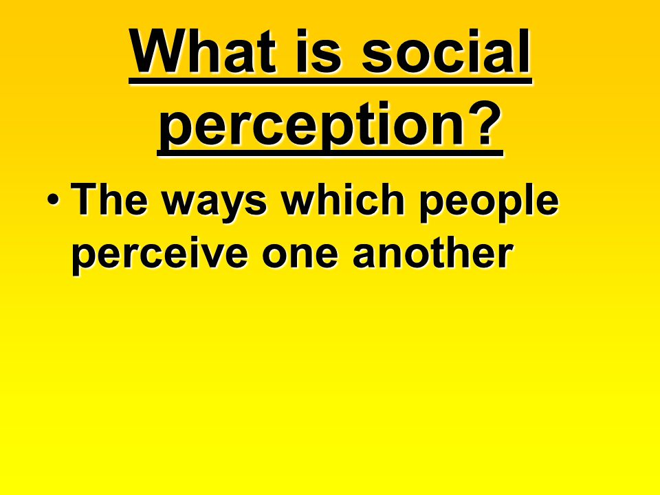 What is social perception.