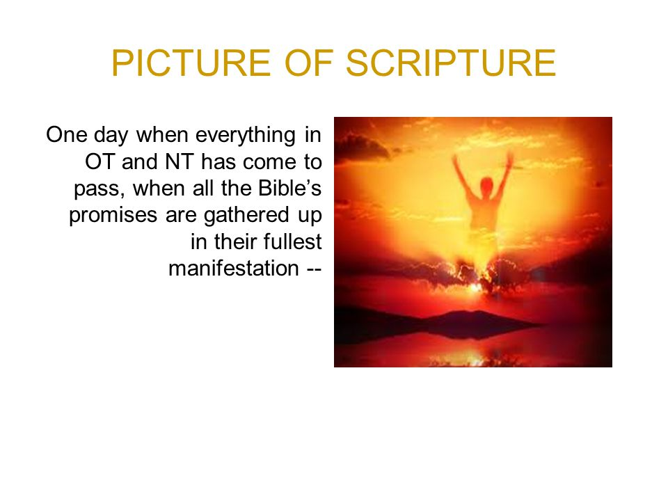 PICTURE OF SCRIPTURE One day when everything in OT and NT has come to pass, when all the Bible's promises are gathered up in their fullest manifestation --