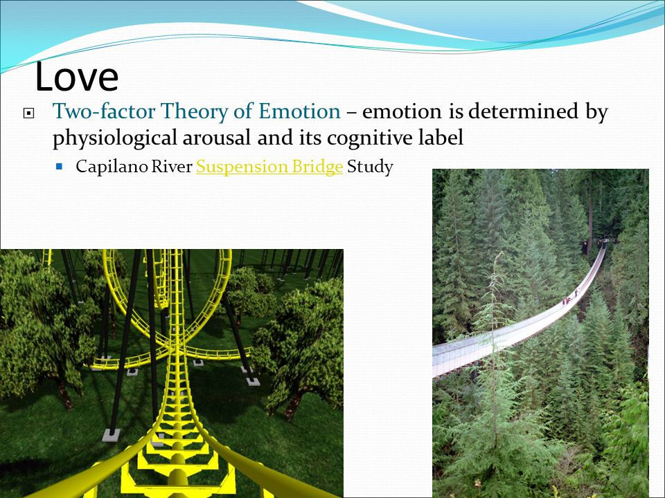 Love  Two-factor Theory of Emotion – emotion is determined by physiological arousal and its cognitive label  Capilano River Suspension Bridge StudyS