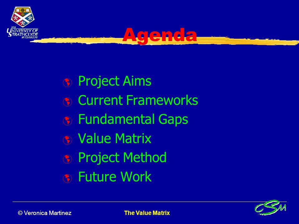 The Value Matrix Veronica Martinez Umit Bititci