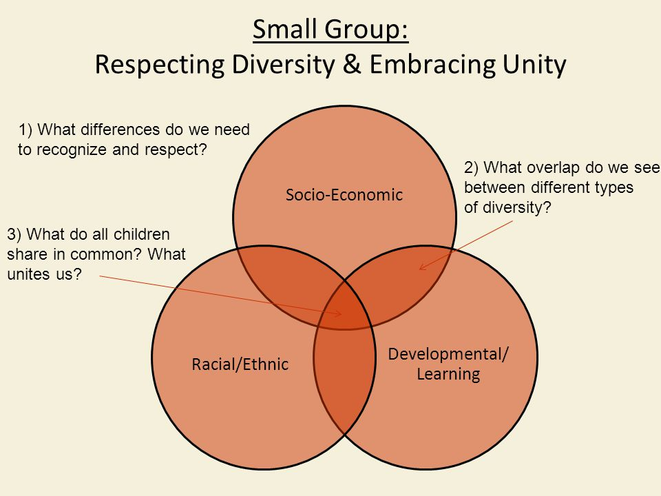 Small Group: Respecting Diversity & Embracing Unity Socio-Economic Developmental/ Learning Racial/Ethnic 1) What differences do we need to recognize and respect.