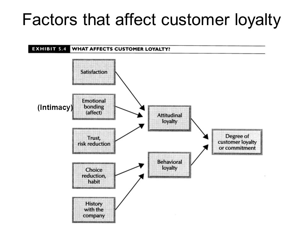 Factors that affect customer loyalty (Intimacy)
