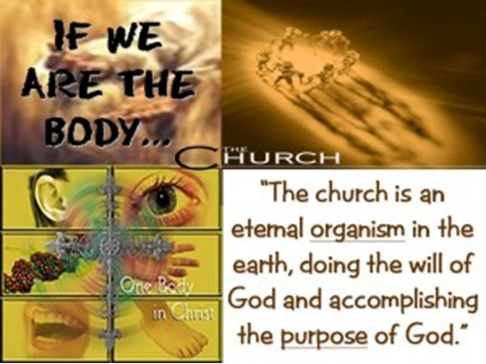 ~WORSHIP~ The Essence Of What makes worship… worship? SACRIFICE
