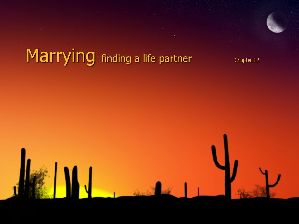 Marrying finding a life partner Chapter 12