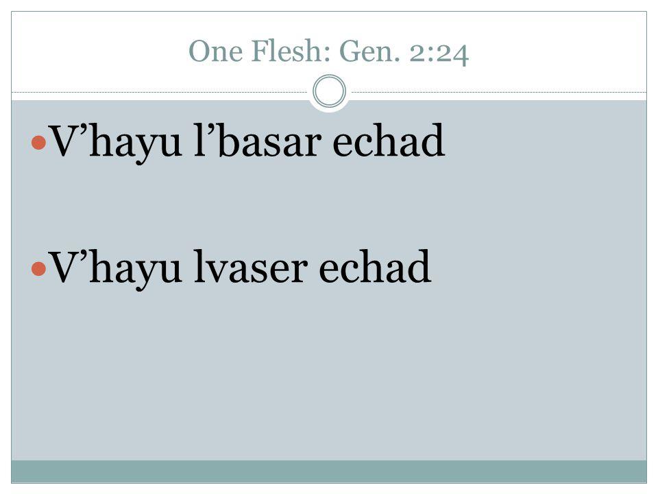 One Flesh: Gen. 2:24 V'hayu l'basar echad V'hayu lvaser echad